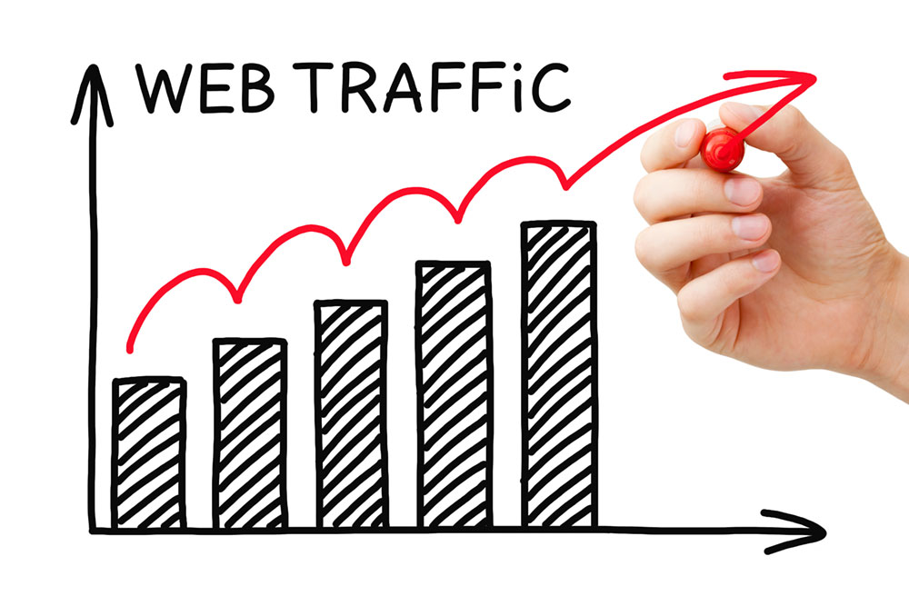 Virtual Coach Bonus - SEO Web Traffic