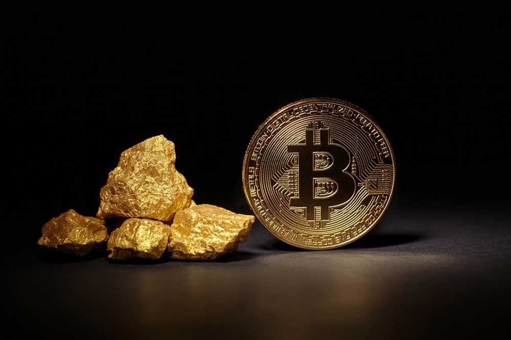 Dan Hollings The Plan Bitcoin